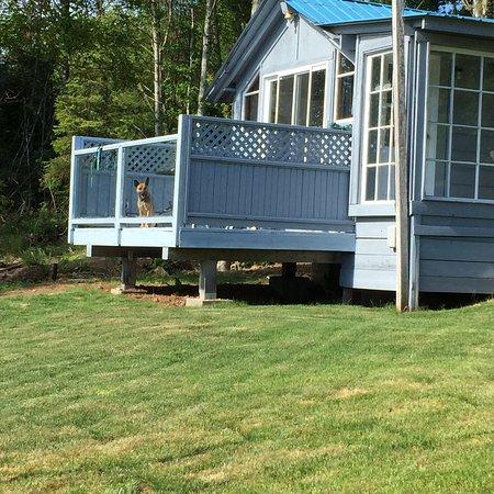 Gordon's Beach Farmstay B & B: Farm life bliss! 💕👌