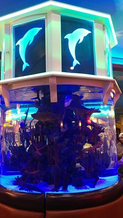 Captain js combo picture of marietta fish market for Marietta fish market