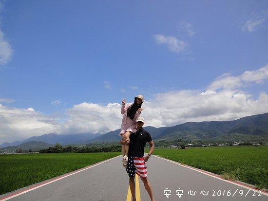Taitung Brown's Road: 伯朗大道旁綠色稻田