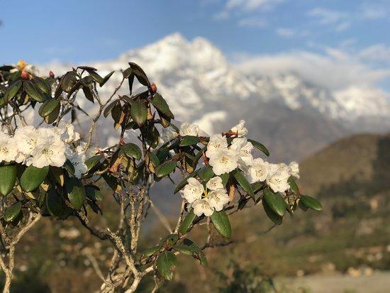 Zam Zam Trekking: morning views