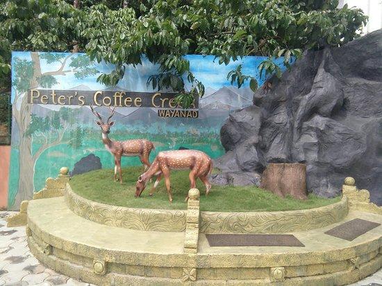 Meppadi, India: TA_IMG_20180605_102512_large.jpg
