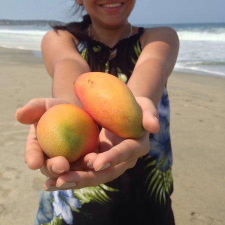 Playa Zicatela: photo7.jpg