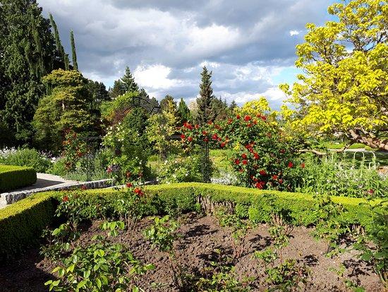 VanDusen Botanical Garden: Rose Garden With Sundial