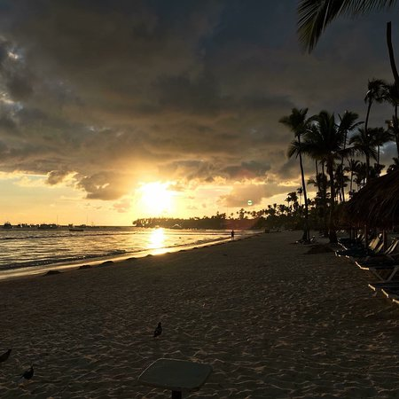 Dreams Palm Beach Punta Cana-bild