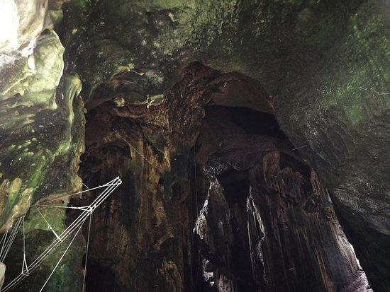 Gomantong Cave Sandakan照片