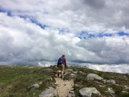 Steinkjerringa/Steinkjerringa: Må jo klatre opp når muligheten byr seg. Flott utsikt over Høg-Jæren