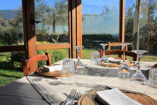 ORTOBIO Ristorante Bio Gourmet: Veranda