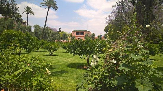La Mamounia Marrakech: il parco