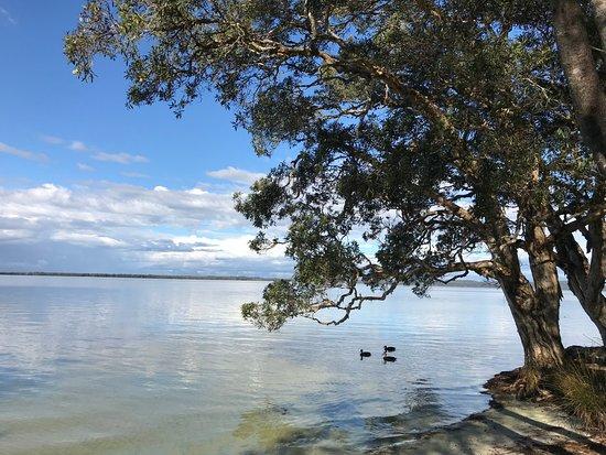 NRMA Myall Shores Holiday Park: lake view