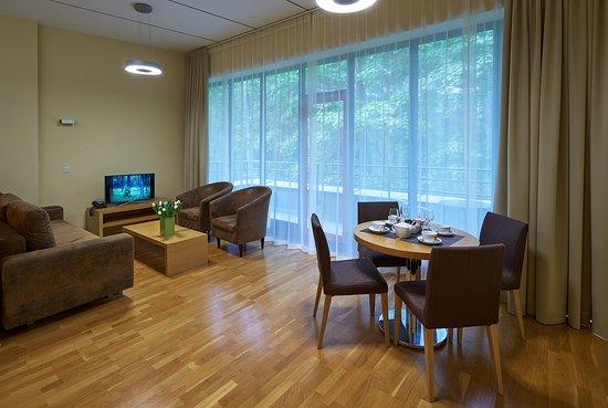 Amber Sea Hotel & SPA: Apartment living room