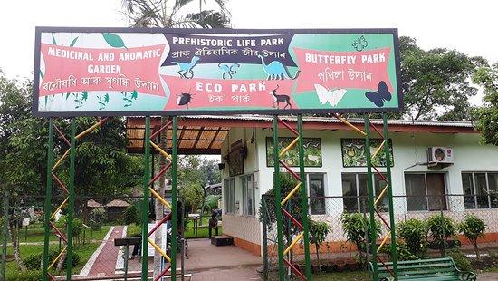 Regional Science Center: Butterfly park