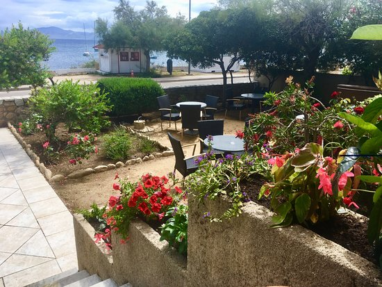 Hotel Isula Rossa: Jardin