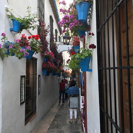 Jewish Quarter (Juderia): ユダヤ人街