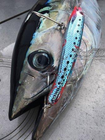 Reel Time Fishing Charters: Fishing in Portland for Tuna June 2018