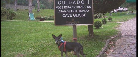 Cave Geisse: entrada