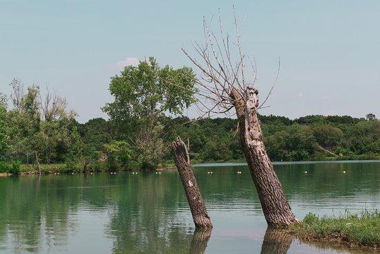 Ristorante Ca' del Lago: Il lago