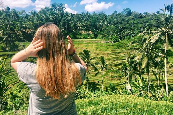 Exotic Paradise Tours: Tegallalang Rice Terraces