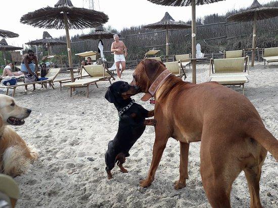 Pascià Glam Beach: Baci e abbracci!!