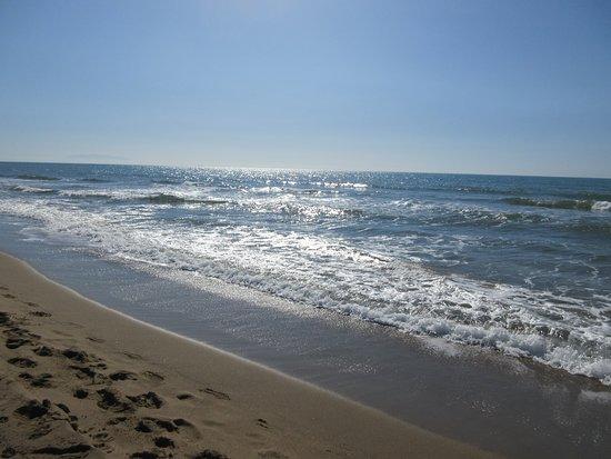 Spiaggia La Principess / Principess Beach: clean waters