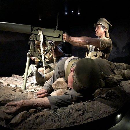 พิพิธภัณฑ์นิวซ๊แลนด์ ภาพถ่าย