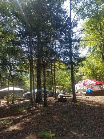Calhoun Falls, SC: 20180604_104157_large.jpg