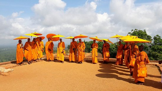 Rent a Tour Guide in Sri Lanka
