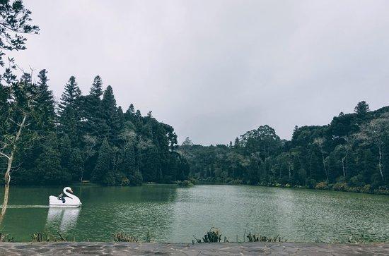Lago Negro ภาพถ่าย