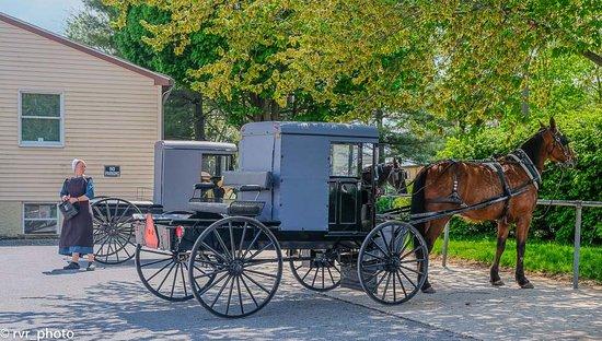 Lancaster County, เพนซิลเวเนีย: Comunidad Amish