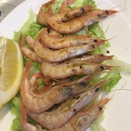 Sociedad De Pesca Deportiva Marbella : Ricoooo