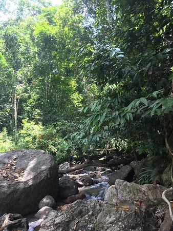 Cendrawasih Expedition : makbon small river