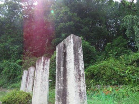Nezumi Stone照片