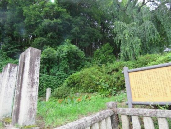 Nezumi Stone: この先に城跡がありそうな雰囲気でした