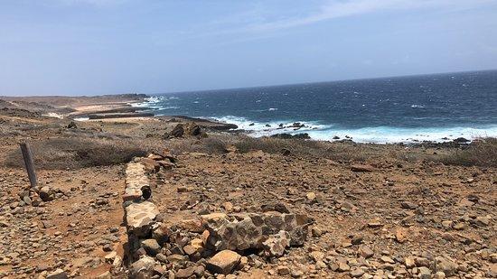 Around Aruba Tours: wild shore