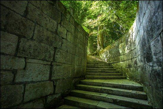 Chateau de La Riviere: Descente au Bain des Dames