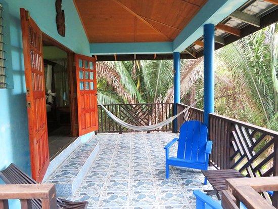 Macaw Bank Photo