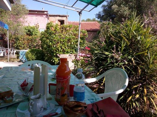 B&B Il Vecchio Gelso: la prima colazione come parte integrante del relax nella natura