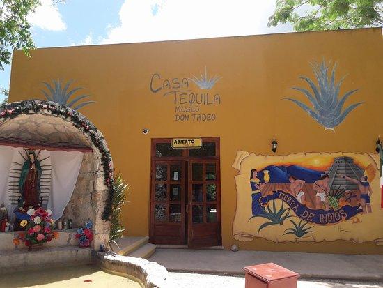 Cenote Hubiku: Ο εξωτερικός χώρος του μουσείου!