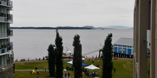 The Sidney Pier Hotel & Spa: View from my room