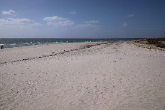 Semaphore Beach: Nice beach