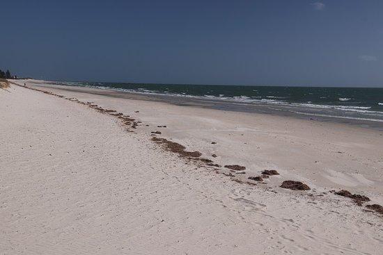 Semaphore Beach: What a great walk we had here!