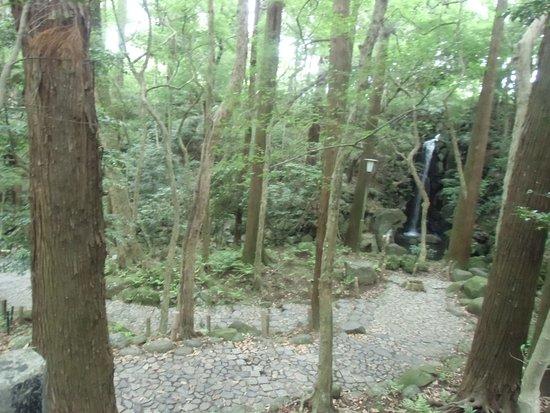 Naritasan Shinsho-ji Temple: 滝・枯れてるようでしたが横に修行滝らしき場所もありました