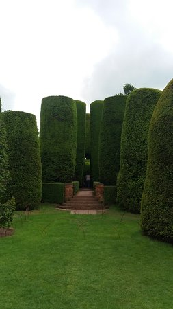 Packwood House: the neatly clipped yews