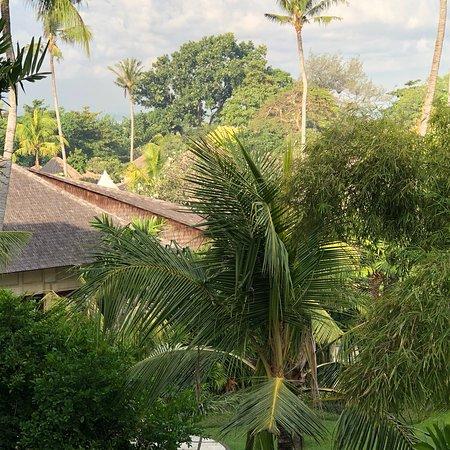 萨努尔海滩酒店照片