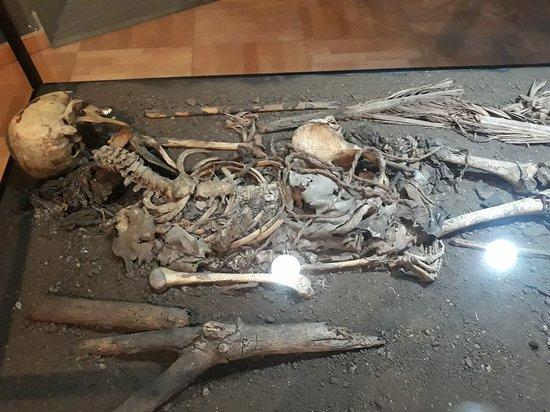 Museo Arqueologico Benahoarita Photo