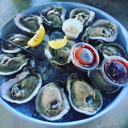 Surfside Beach, TX: Fresh Oysters!