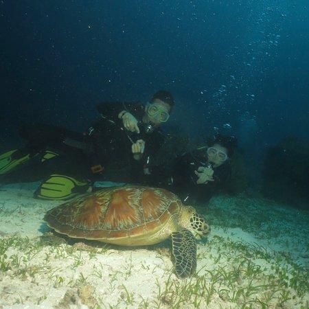 Balicasag island with Alona Divers