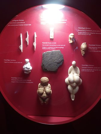 Neanderthal Museum: In the museum