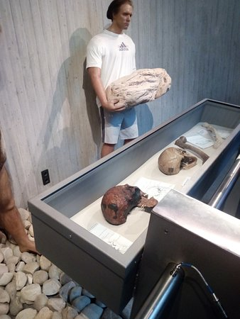 Neanderthal Museum: evolution of humans