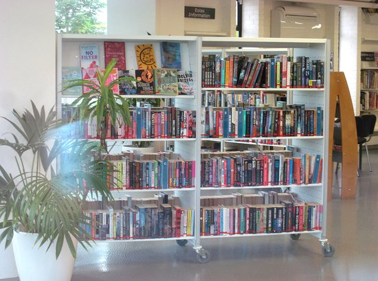 Deansgrange Library: Wide choice of subject matters