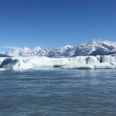 Knik Glacier Tours Foto